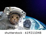Cat Astronaut In Space On...