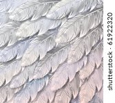 seamless background of white... | Shutterstock .eps vector #61922320