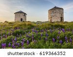 windmills and spring flowers in ... | Shutterstock . vector #619366352
