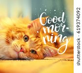 the concept is good morning. a... | Shutterstock . vector #619374092