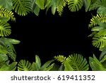 tropical jungle leaves... | Shutterstock . vector #619411352