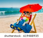 Stock photo jack russel dog resting and relaxing on a hammock or beach chair under umbrella at the beach ocean 619488935