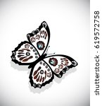 colorful butterfly isolated on... | Shutterstock . vector #619572758