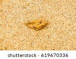 the background | Shutterstock . vector #619670336