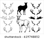 hand drawn contours and... | Shutterstock .eps vector #619748852