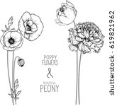flowers drawing peony and...   Shutterstock .eps vector #619821962