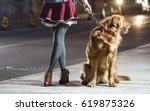 the streets of the night  the... | Shutterstock . vector #619875326
