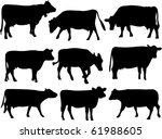 Cow Silhouette Collection  ...