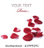 Stock photo rose petals border isolated on white 61999291