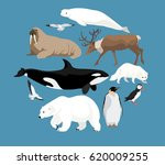 polar animals circle set with... | Shutterstock .eps vector #620009255