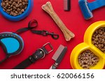 pet accessories on red... | Shutterstock . vector #620066156