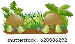 two turtles in the garden... | Shutterstock .eps vector #620086292