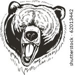 the head grizzly brown bear | Shutterstock .eps vector #62013442