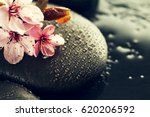 beautiful pink spa flowers on... | Shutterstock . vector #620206592