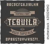 handcrafted 'tequila' font with ... | Shutterstock .eps vector #620324042
