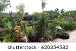 the garden | Shutterstock . vector #620354582