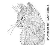 cat coloring book page.... | Shutterstock .eps vector #620438816
