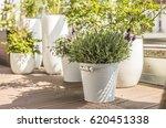 city terrace in spring  balcony ... | Shutterstock . vector #620451338