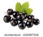 Bunch Of Fresh Blackcurrants O...