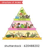 aromatic structure notes guide...   Shutterstock .eps vector #620488202