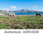 lago di campotosto  abruzzo ... | Shutterstock . vector #620513228
