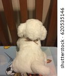 Small photo of Touchy Dog Doll climb Head bed