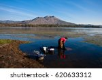 Old woman washing clothes in the lake of kintamani with background beautiful batur mountain in the blue sky  morning