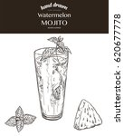 watermelon mojito. vector... | Shutterstock .eps vector #620677778