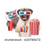 Stock photo funny kitten and puppy in the d glasses with popcorn basket and cola showing thumbs up isolated 620780672