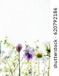 spring flowers | Shutterstock . vector #620792186