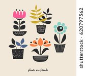 set of house plants in pots | Shutterstock .eps vector #620797562