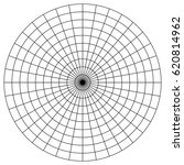 blank polar graph paper  ...   Shutterstock .eps vector #620814962