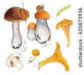 watercolor marker set of...   Shutterstock . vector #620873936