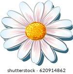 daisy. | Shutterstock .eps vector #620914862