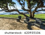 park in nevogilde district in... | Shutterstock . vector #620935106
