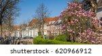 panorama of the zuidsingel... | Shutterstock . vector #620966912