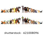 border of dogs and cats... | Shutterstock .eps vector #621008096
