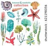 watercolor sea life  seaweed ...   Shutterstock . vector #621198356