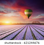 a beautiful field of flowers in ... | Shutterstock . vector #621244676