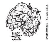 hops vector visual graphic... | Shutterstock .eps vector #621316316