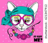 vector white cat with glasses ... | Shutterstock .eps vector #621347912