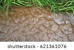 Small photo of Sand alluvial structures