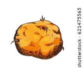 vegetable hand draw   Shutterstock .eps vector #621475565