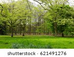 green park  forest in spring in ... | Shutterstock . vector #621491276
