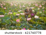 Family Farmer Working In Lotus...