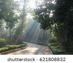bio diversity cum recreation... | Shutterstock . vector #621808832