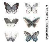 collection of flying... | Shutterstock .eps vector #621813875