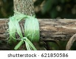 Small photo of Rope Bind To The Wood