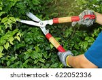 pruning of ornamental trees by... | Shutterstock . vector #622052336