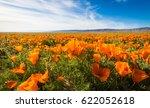 california golden poppies... | Shutterstock . vector #622052618